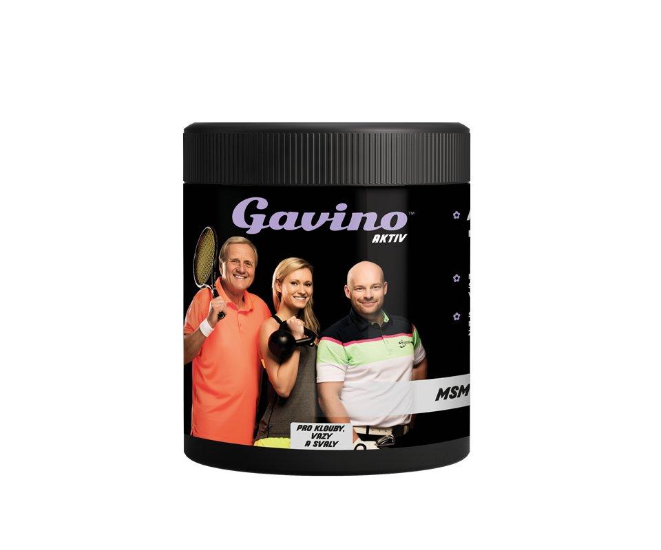Kloubní doplněk Gavino AKTIV MSM 700g (doplněk stravy)
